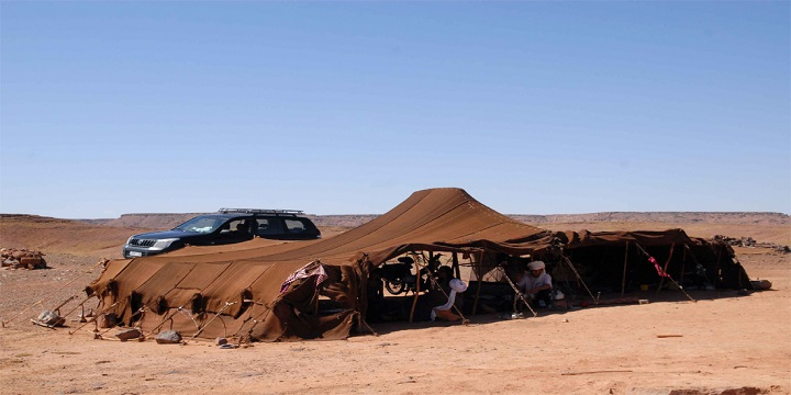 Day Tour from Merzouga to Safsaf Oasis - Merzouga Excursion
